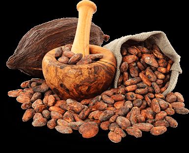 Какаови зърна от Еквадор