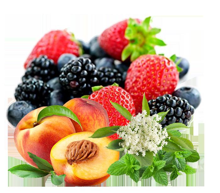 Плодове и билки